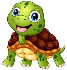Cute turtle cartoon smiling