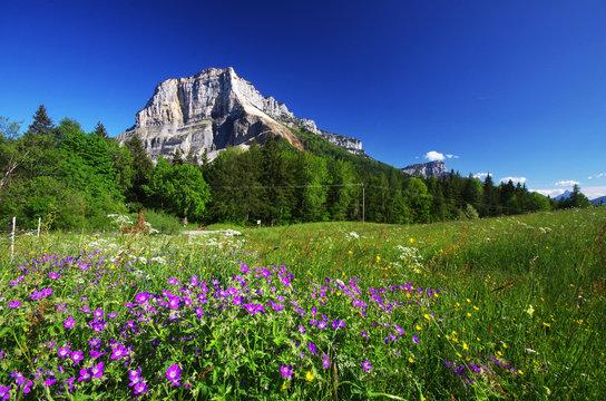 massif de la chartreuse - mont granier