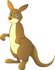 Vector illustration, adult kangaroo