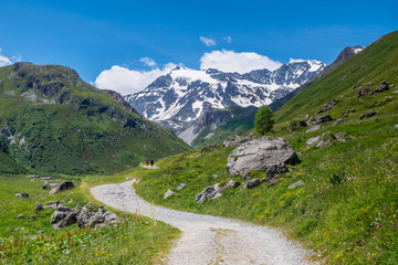 The Vanoise massif is an important mountain range of the Graian Alps in the Western Alps. After the Mont Blanc Massif