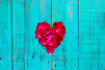 Rose petals in shape of heart on teal blue rustic wood background
