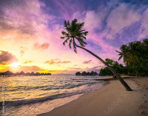 Sonnenuntergang Am Palmenstrand In Der Karibik Stockfotos Und