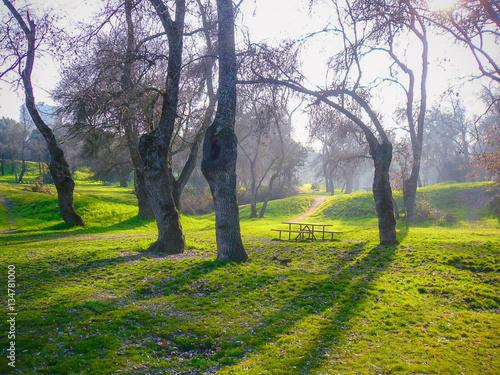 Old park casa de campo in madrid stockfotos und - Casa de campo park ...