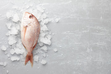 Red Japanese seabream