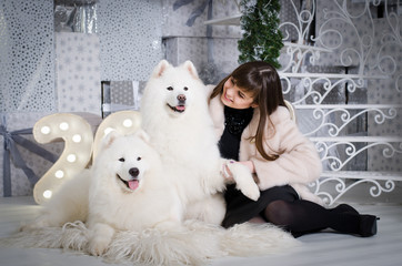 Young beautiful attractive woman in a white fur coat, sitting on a wooden floor with two white samoyeds