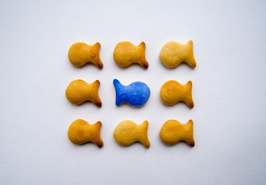 Cookies in the form of little fishes lie on paper