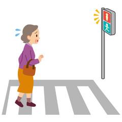 ロコモ 横断歩道お渡る 高齢者