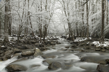 Snowy Landscape, Greenbrier Area, Great Smoky Mtns Nat. Park, TN
