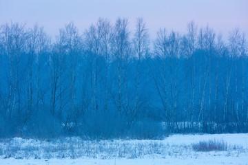 Polish typical winter rural landscape