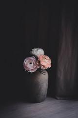 Ranunkeln in Vase am Fenster vor Gardine