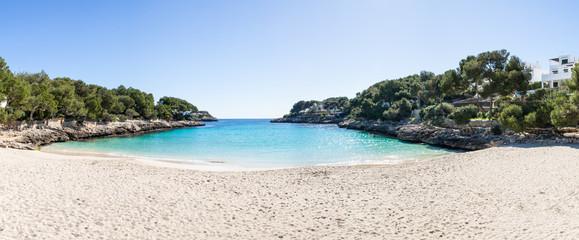 Mallorca Strand unter Palmen