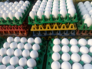 Full frame shot of chicken eggs for sale