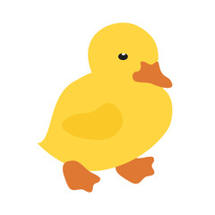 Cute cartoon duck