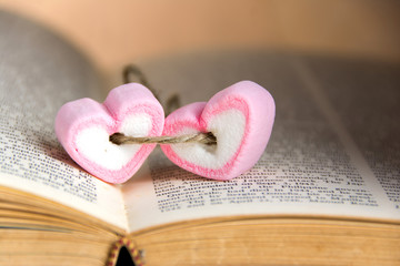 heart shape marshmallow  on book for valentines day concept