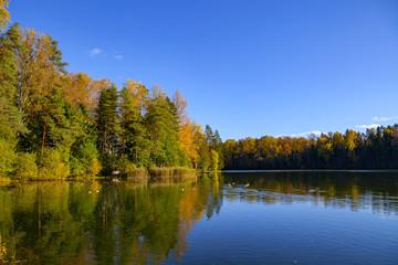 Autumn forest reflection in pond, Aegviidu, Estonia