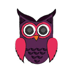 owl cartoon icon over white background. colorful design. vector illustration