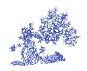 Маленькое денежное дерево.