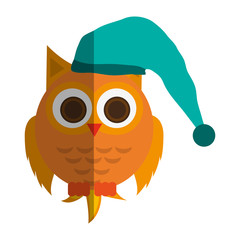 owl with sleep hat over white background. colorful design. vector illustration