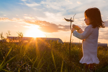Girl holding plant stem in field at sunset