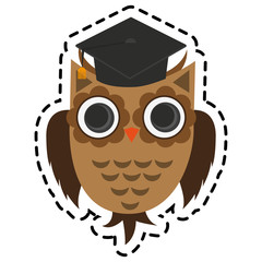 owl with graduation cap over white background. colorful design. vector illustration
