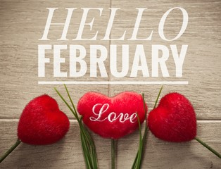 Hello February words on red heart and wooden background