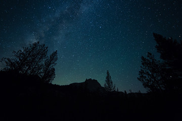 Milky way rises over the forest and mountains of California's high sierra