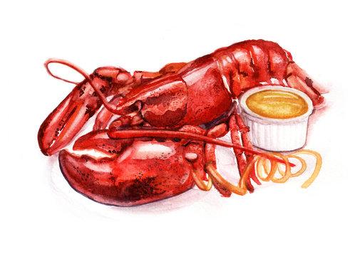 Watercolor lobster