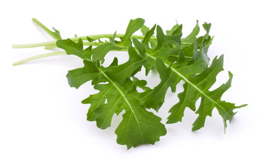 Close up studio shot of green fresh rucola leaves isolated on wh