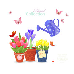 spring flowers planted in ethnic flowerpots and a vintage can wa