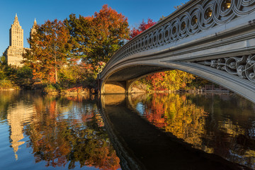 Fall in Central Park at The Lake with the Bow Bridge. Morning view with colorful Autumn foliage on the Upper West Side. Manhattan, New York City
