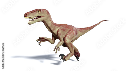 running Dromaeosaur dinosaur (3d illustration isolated with shadow on white background)