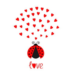 Red flying lady bug insect with hearts. Cute cartoon character. Happy Valentines Day. Word Love Greeting card. White background. Flat design.