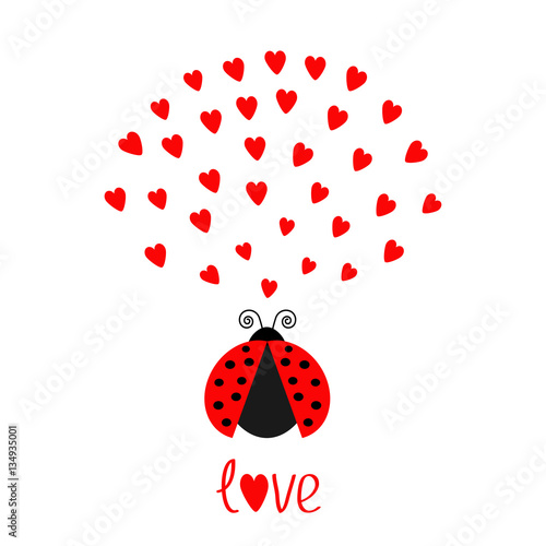 Red Flying Lady Bug Insect With Hearts Cute Cartoon Character