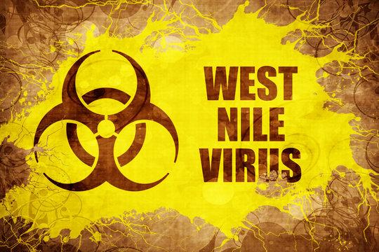 Grunge vintage West nile virus