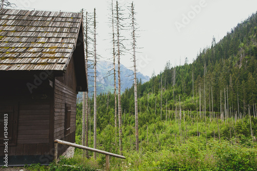 wooden hut near mountain - photo #30