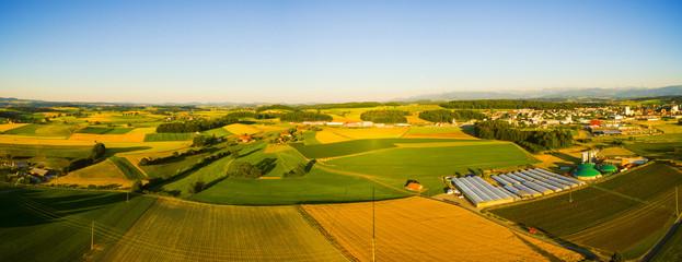 Felder bei Sonnenuntergang, Schweiz, Luftbild