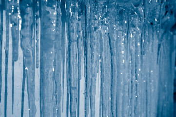 Background of icicles. Frozen water.