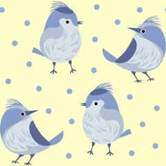 gray blue birds