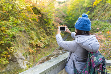 Woman taking photo by cellphone at green forest