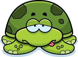Sick Little Sea Turtle