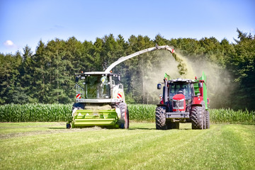 Fototapete - Grass harvest for grass silage - with modern technology