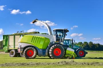 Fototapete - Grasernte  - Claas Häcksler mit Traktor und Ladewagen bei der Ernte