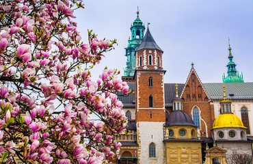 Fototapeta Cathedral of St Stanislaw and St Vaclav and royal castle. Krakow obraz
