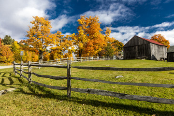 October 17, 2017 New England farm with Autumn Sugar Maples - Vermont