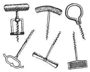 Big set of corkscrew in vintage old engraving style, hand drawn in scratchboard  classic