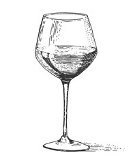 Red wine glass isolated Vintage engraved, hand drawn old