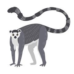 Lemur monkey rare animal vector.