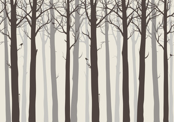 Wall Mural - background seamless horizontal, trees with birds, brown colors, vector illustration.It can be used as wallpaper in the interior