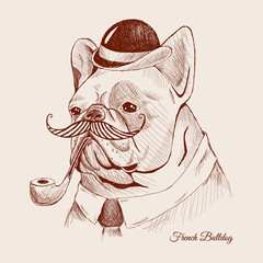 Hand Drawn Vector Portrait of French Bulldog in a hat and pipe tobacco