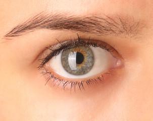 Close up view of a green woman eye looking at camera
